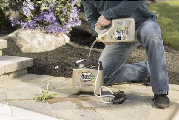 Roundup Ready-To-Use Extended Control Weed Grass Killer